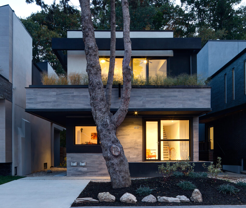 A 75-year-old blue spruce stands as an uninterrupted sentinel in front of architect David Peterson's West End home. Landscaping – including the planted roof – by David Peterson Architect.