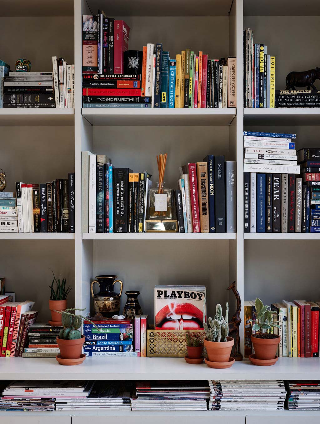 With authors from Ernest Hemingway to Ta-Nehisi Coates, and books on subjects including sandwiches and Yiddish, the rhyme and reason to Forrest and his wife's book collection is simple: they collect what they like.